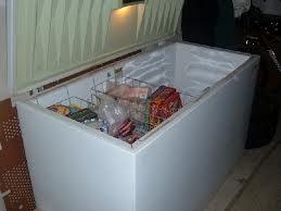 Freezer Repair Service